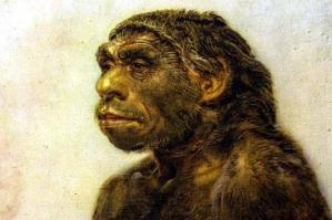 neanderthal BBC