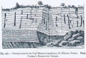 A Text Book on Geology by Charles Schuchert